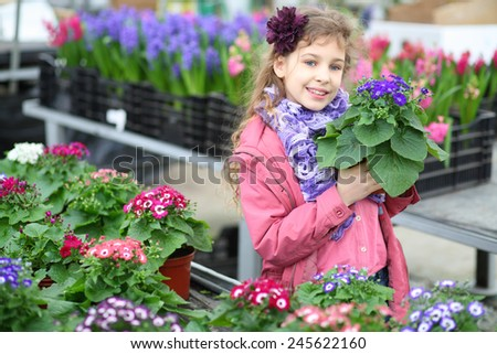 Smiling girl in a pink jacket holding flower pot with cineraria in the greenhouse - stock photo