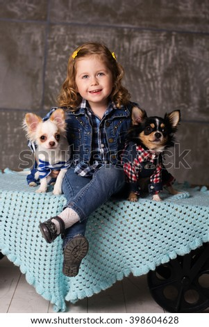 Smiling girl is sitting with chuhuahua dogs - stock photo