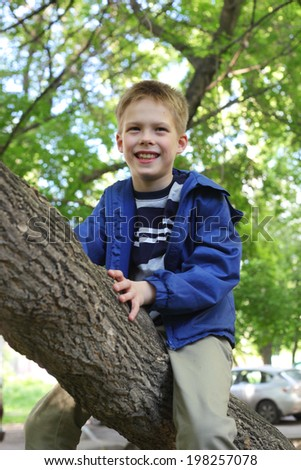 smiling little boy climbing trees