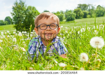 Smiling little boy lays on a beautiful meadow - stock photo