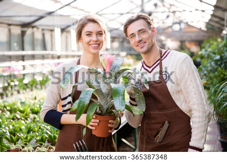 Smiling man florist and woman gardener in brown aprons holding beautiful pink flower in pot with big leaves in orangery - stock photo