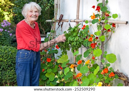 Smiling Old Woman Posing at her Flower Vines at her House Garden. - stock photo