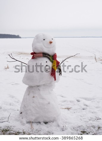 Smiling snowman with carrot nose and stripe colorful scarf near frozen lake - stock photo