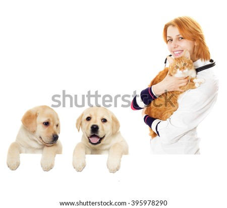 smiling vet and cat - stock photo