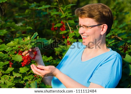 Smiling woman harvesting red currant bush, horizon format - stock photo