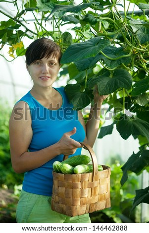Smiling woman with harvested cucumber in the greenhouse - stock photo