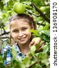Smiling young girl collects the apples from tree - stock photo