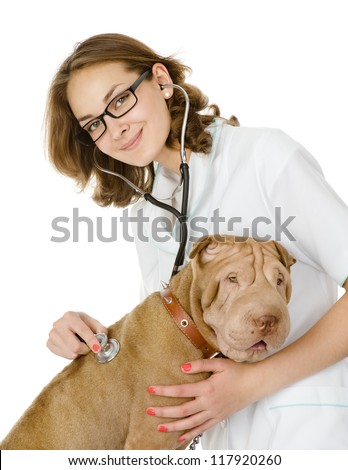 Smiling young vet checking the heart rate of a adult sharpei dog.  woman looking at camera. isolated on white background