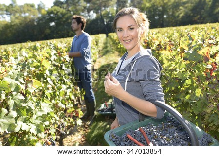 Smiling young woman harvester holding basket in vineyard
