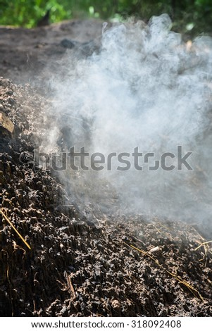 Smoke from burning wood to make charcoal.