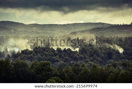 Smoke in forest caused by deforestation. Madagascar - stock photo