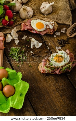 Smoked ham sandwich, rustic bread with bulls-eye egg, microgreens and fresh radish - stock photo
