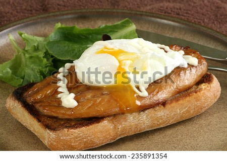 smoked mackerel on toasted ciabata topped with a poached egg                                - stock photo