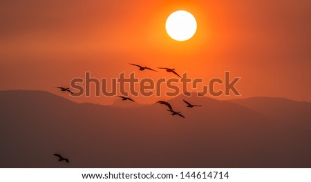 smokey start to the day - stock photo