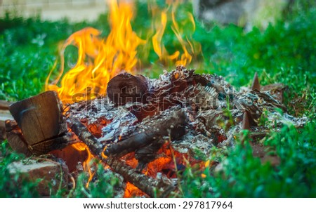 Smoking and burning firewood closeup with green grass on background.