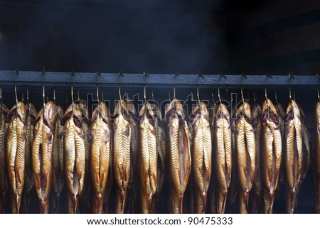 Smoking brook trout fish in an traditional oven - stock photo