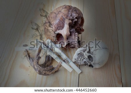 Smoking can kill you like people smoke cigarette and get toxin body look like way to die. Still Life with a Skull concept. please quit or stop smoke for good health. - stock photo