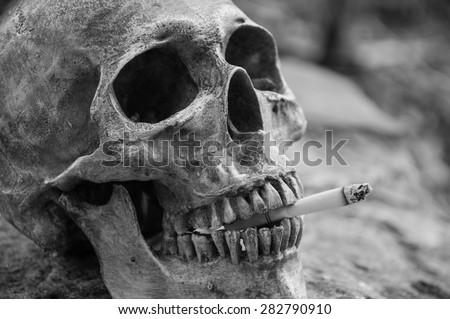 Smoking human skull in black and white tone - stock photo