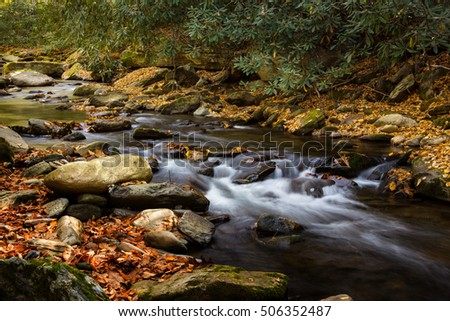 Smoky Mountains National Park river flowing in autumn with colorful leaves