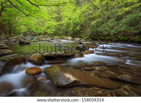 Smoky mountains national park, running stream with lush greens  - stock photo