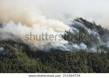 Smoky plumes of a Northern California forest fire - stock photo
