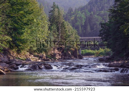 smooth flow of the river in the forest, Ukraine