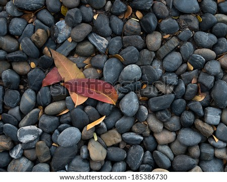Smooth stones and leaf