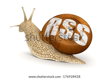 Snail and RSS (clipping path included) - stock photo