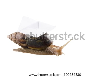 Snail carrying an envelope, isolated on white, with empty space for your text (snail mail concept) - stock photo