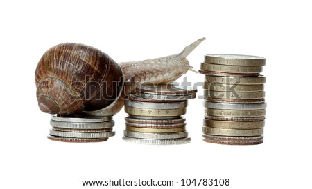 snail climbing coins - stock photo