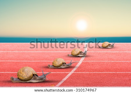 Snail effort running on red rubber track.Business concept.
