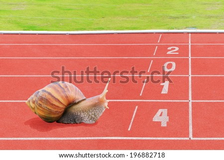 Snail effort running on red rubber track near finish line with numbering year 2014 . - stock photo