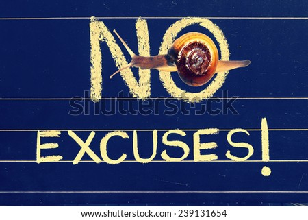 Snail on blackboard with handwritten as no excuses phrase - stock photo