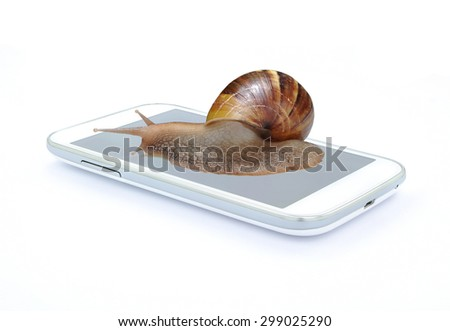 Snail on smart phone on white background , Fast slow concept - stock photo