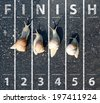 Snail run near the Finish line - stock photo