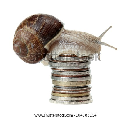 snail with coins - stock photo