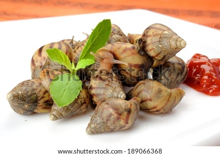 snails be alive on white plate with tomato sauce, fake food - stock photo