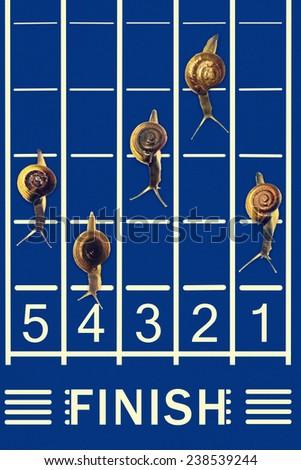 Snails running on track - stock photo