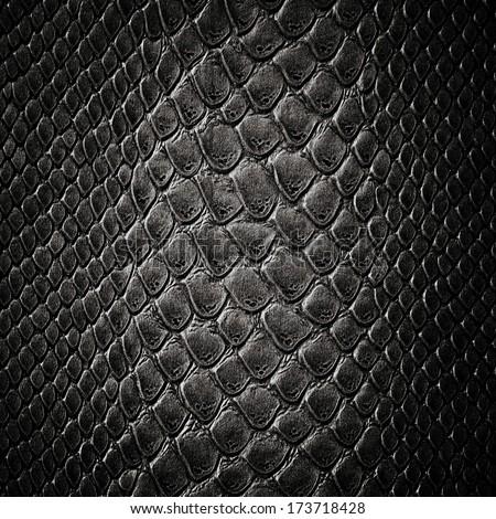 Snake black skin leather texture - stock photo
