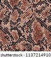 snake pattern  piton skin