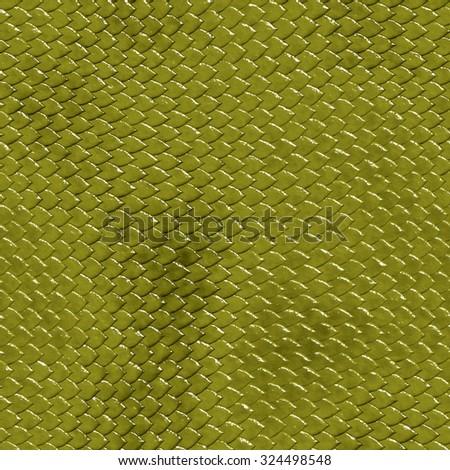 Snake skin - stock photo