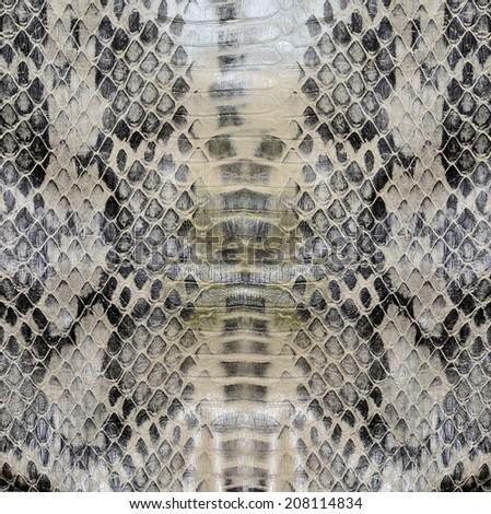 Snake skin , reptile  - stock photo