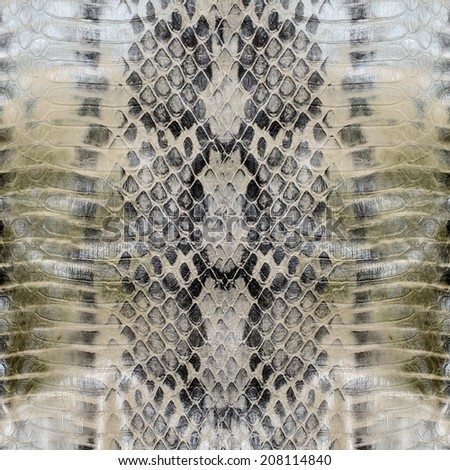 Snake skin , reptile  - stock photo