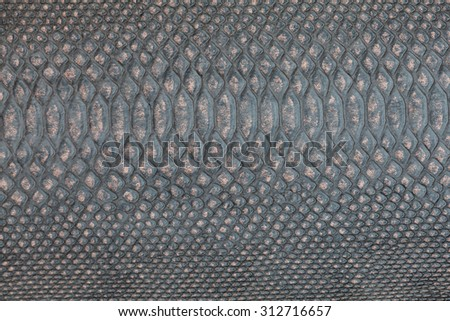 snake skin texture as a background