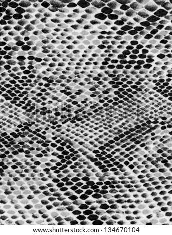Snake skin texture background - stock photo