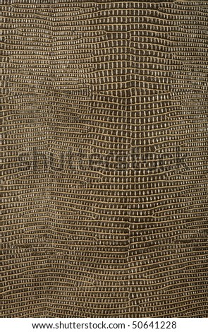 snake skin texture, background - stock photo