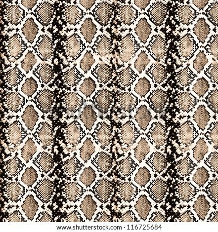 snake texture background - stock photo