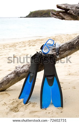 Snorkel gear propped up on driftwood. - stock photo