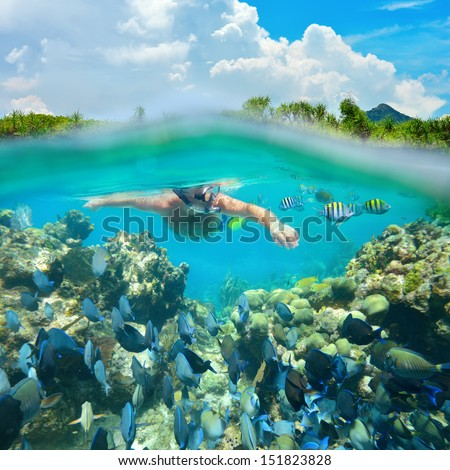 Snorkeler diving along the beatiful coral reef. - stock photo