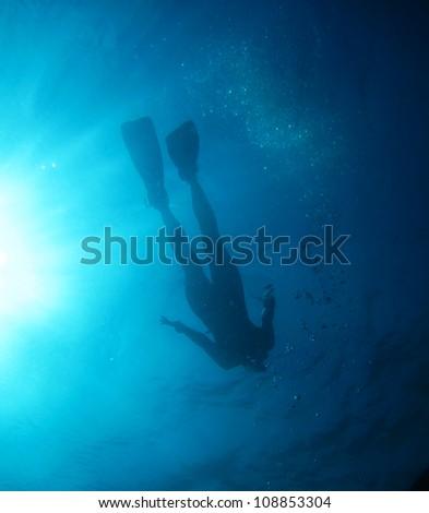 snorkeling from below, Caribbean Sea - stock photo